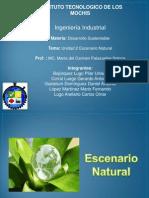 Expo Desarrollo unidad 2.pptx