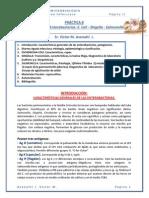 P.8 DIARREA INFECCIOSA, Avenatti Victor.pdf