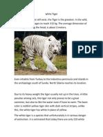 white Tiger.docx