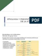 ETIOLOGIA Y FISIOPATOLOGIA DE LA ICTERICIA.ppt
