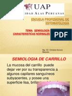 4ta Clase Estudio semiológico de los carrillos.pptx
