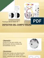 DEFECTOS DEL CAMPO VISUAL.pptx