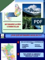 diversificacion-comunicacic3b3n.pptx
