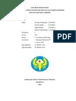 FIX PRINT LAPORAN PENCELUPAN KELOMPOK 1 PUNYA SHELLY SAMPAI GIOVANI.doc