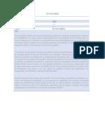 CITAS DE LIBROS tesis.docx