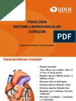 Clase  Corazon.pdf