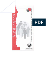 sindicatos.pdf