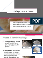 Budidaya jamur tiram.pptx