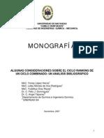 monografico pinch.pdf