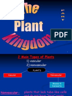Plant Kingdom_Part_Two.ppt