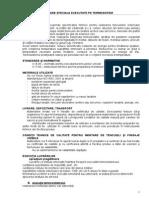 CAIET DE SARCINI diverse arh.doc