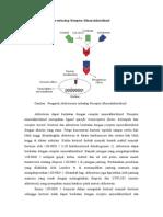 Pengaruh Aldosterone Terhadap Reseptor Mineralokortikoid