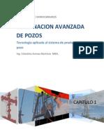 Capitulo I.- terminacion de pozos.pdf