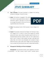 1 Executive Summary(1)