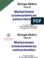 Tema_23_Mutaciones_estructurales.pdf