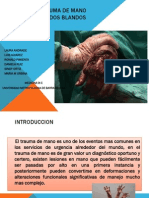 TRAUMA DE MANO maria monica urbina.pdf