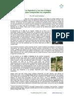 B2_TRES_CODIGOS.pdf
