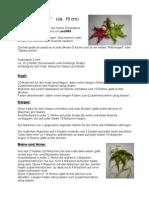 Knubbelchen-Minis.pdf