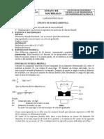 L2 DBrinell.doc