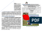 DIPTICO DE OBJETIVO 2.doc