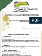 CACAO IV.pptx