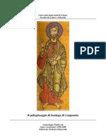 Il_pellegrinaggio_di_Santiago_di_Compostela-libre.pdf