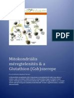 mitokondrilis mregtelents