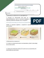 ATIVIDADE - excepções ao princípio da sobreposição.docx