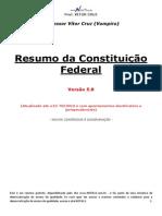 Resumo direito constitucional 2.pdf