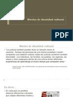 Clase 7_ Niveles de identidad cultural.pptx