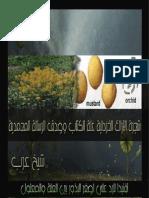 شجرة الآراك الخردلية علة الكتاب وصدق الرسالة المحمدية