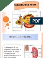 GLOMERULONEFRITIS AGUDA-CORREGIDO.pptx