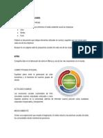 CAPITULO 3 - CASO PRACTICO.pdf