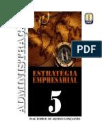 ESTRATÉGIA EMPRESARIAL - Volume 5.pdf