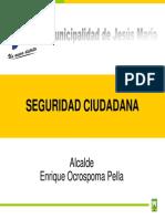 SEGURIDAD CIUDADDANA.pdf