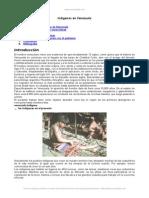 indigenas-venezuela1.doc