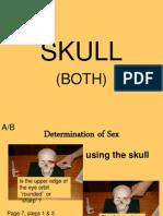 sherlock bones ppt mb bw rv jj 1415 3 skull