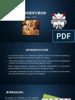 halogenuros.pptx