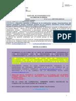 Guíanº2 de actividades_historia_LCCP_7ºbásico.doc