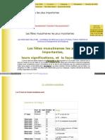 cultureetreligions_free_fr_les_fetes_musulmanes_les_plus_im.pdf