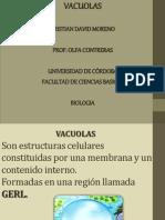 expo vacuolas.pptx