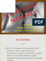 PATOLOGIA MAMARIA.pptx