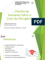 Interferências Humanas no Ciclo do Nitrogênio.ppt