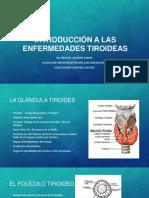 Clase 6 y 7 - INTRODUCCIÓN A LAS ENFERMEDADES TIROIDEAS - BOCIO ENDEMICO - HIPOTIROIDISMO.pptx