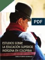 educacion_indigena.pdf
