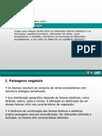 biomas naturais.ppt