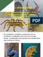 FILO ARTHROPODA.ppt