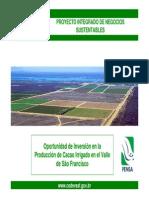 PPT Cacau ESPANHOL.pdf