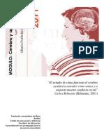 CEREBRO-APRENDIZAJE-2-lilianaarias.pdf