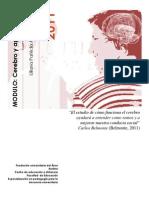 CEREBRO-APRENDIZAJE-3-lilianaarias.pdf
